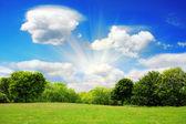 Beautiful spring landscape, nature background — Stock Photo