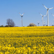 Windmill farm in the rapeseed field - Stock Photo
