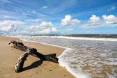 Sea landscape, Baltic Sea — Stock Photo