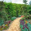 Walkway winding its way through a tranquil garden — Stok fotoğraf