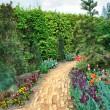 Walkway winding its way through a tranquil garden — Stock Photo #8624760