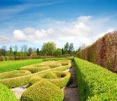 Tranquil Formal Garden in spring — Stock Photo