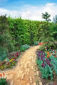 Walkway winding its way through a tranquil garden — Stock Photo