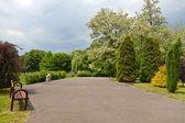 Parque de la ciudad en primavera — Foto de Stock