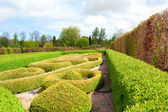 Garden with Topiary Landscaping — Stock Photo
