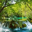 Beautiful nature,Waterfall in Plitvice — Stock Photo