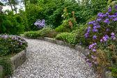 Exuberante jardín de verano con camino pavimentado en flor — Foto de Stock