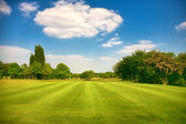 Golf park, Yorkshire,uk — Stock Photo