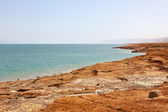 Dead Sea, Israel — Stock Photo