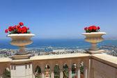Haifa, a view of the Bahai gardens — Stock Photo