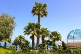 Costa mediterrânica do médio oriente — Foto Stock