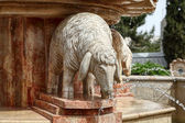 Fountain of sheep — Stock Photo