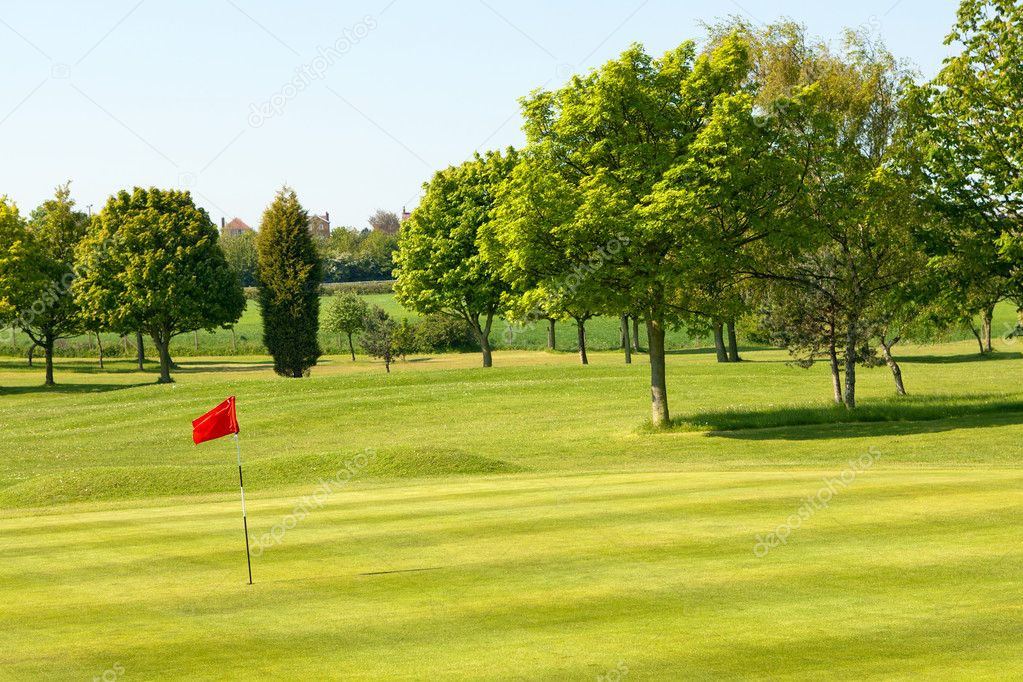 Golf field  Foto de Stock   #10710146