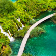 Plitvice Lakes — Stock Photo #7960961