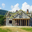 Foto Stock: House construction