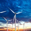Wind turbines farm at sunset - Stock Photo