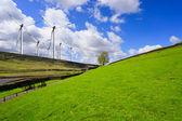 зеленого холма и турбинные — Стоковое фото