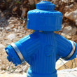 Fire blue hydrant - Stock Photo