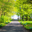 Stock Photo: Green park