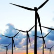 Wind turbines panorama — Stock Photo #8633025