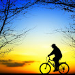 Bike trip at sunset — Stock Photo