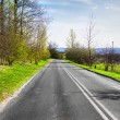 Country Road — Stock Photo #8820546
