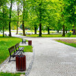 Green city park — Stock Photo #8878245