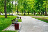 Green city park — Stockfoto