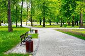 Parque de la ciudad verde — Foto de Stock
