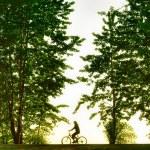 Biker silhouette at sunset — Stock Photo #8910217