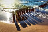 Seacoast in sunset — Stock Photo