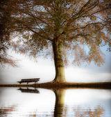 Vieux banc de bois dans le parc automne — Photo