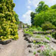 Stock Photo: Park path in York, UK