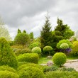 Beautiful garden — Stock Photo #9094017