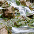 Mountain stream — Stock Photo #9117470