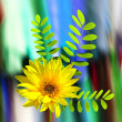 A bright and colorful spring banner — Stock Photo