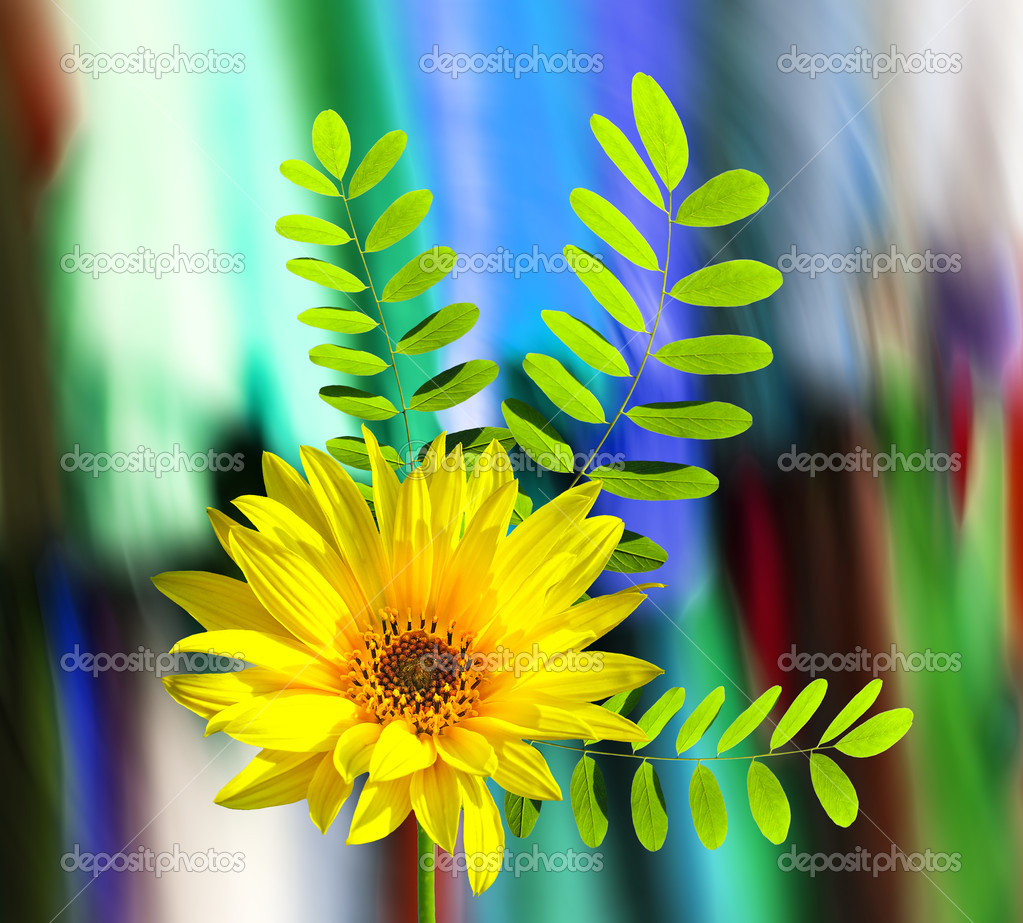 A bright and colorful spring banner — Stock Photo #9138056