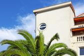 новый дом и зеленые пальмы — Стоковое фото
