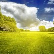 Stock Photo: Green field and clouds