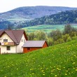 The family home in the mountains - Stock Photo