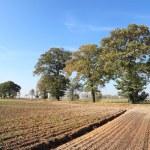 Rural landscape — Stock Photo #9970253