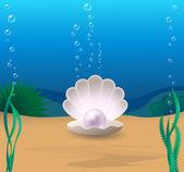 Perle — Stockvektor