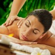 Spa treatment — Stock Photo #10641772