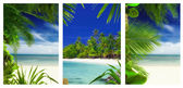 Three tropic beach and palms theme pictures collage — Stock Photo