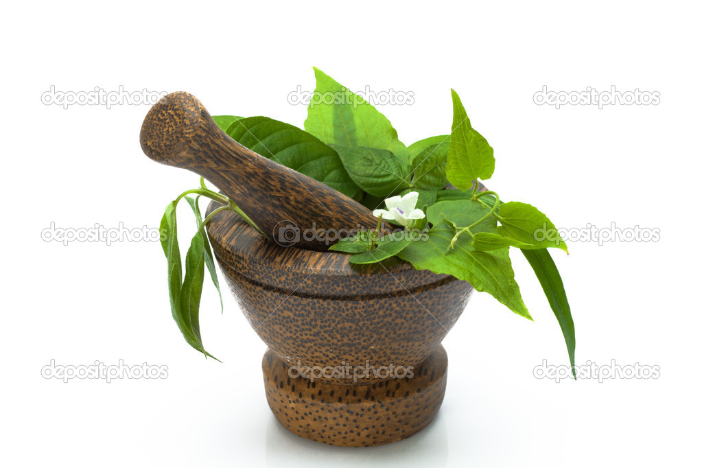 Close up view of  brown mortar with ingredients inside on white back — Stock Photo #10641113