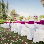 Weddingwedding — Stock Photo #8843921