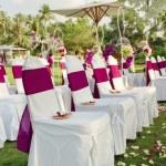 Weddingwedding — Stock Photo #8876830