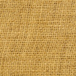Twig, rush, rattan, reed, cane, wicker or straw mat background — Stock Photo #9844726