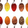 Spices — Stock Photo #9990275