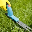 Stock Photo: Grass trimming
